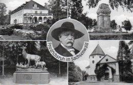 FRIEDRICHSRUH IM SACHSENWALD- VIAGGIATA 1958 - Friedrichsruh