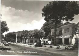 W4597/99 Fiumicino (Roma) - Fregene - Viale Castellammare - Auto Cars Voitures - Elettrodomestici Paoli / Non Viaggiata - Fiumicino