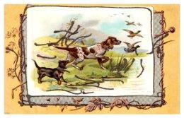 Dog , Hunting Dog , Ducks - Dogs