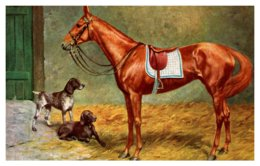 Dog ,  Horse And Dogs - Dogs