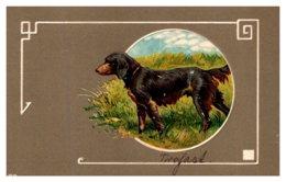 Dog , Hunting Dog - Dogs