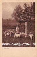 Suisse - NL - Campagne Romande - A La Fontaine Ziege Chevre Goat - Zonder Classificatie