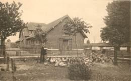 Belgique - Tournai - Passy-Froyennes - La Basse-Cour - Doornik