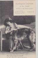 PARIS 9eme Clinique Canine 21 Rue Turgot - Distretto: 09