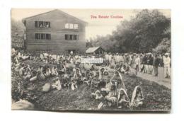 Ceylon - Tea Estate Coolies, Child Labour - Old Postcard - Sri Lanka (Ceylon)