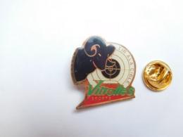 Beau Pin's , Tir à La Cible , Vitrolles Sports , Bouches Du Rhône - Pin