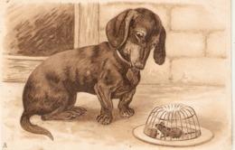 """Dog Looking At Mouse"" Tuck Art Series Postcard # 1983 - Tuck, Raphael"