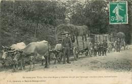 03* ALLIER  Convoi Bœufs ( Pliure A Gauche)                MA94,0179 - France