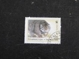 TADJIKISTAN YT 87 OBLITERE - MANUL CHAT DE PALLAS CAT KATZ - Tadjikistan