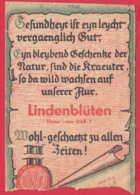 248191 / LINDENBLÜTEN - HVS - VEB HEILKRAUTER - VERARBEITUNG , Germany Deutschland Allemagne Germania - Advertising