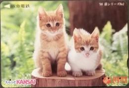 Prepaidcard Japan - Katzen,cats (8) - Katzen