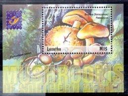 Lesotho Hoja Bloque Nº Yvert 175 ** SETAS (MUSHROOMS) - Lesotho (1966-...)