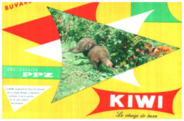 Ci KW/Buvard Cirage Kiwi (format 18 X 12) (N= 5) - Chaussures