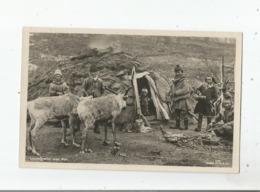(NORGE) 1/32 LAPPEFAMILIE MED REN - Norvège