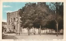 MEZIN - Promenade Du Club Et Entrée Principale De La Cathédrale - Autres Communes