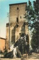 SAINTE LIVRADE - Le Tour Du Roy - Autres Communes