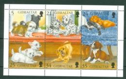 Gibraltar: 1996   Puppies   MNH - Gibilterra