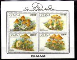 Ghana Hoja Bloque Nº Yvert 158 ** SETAS (MUSHROOMS) - Ghana (1957-...)