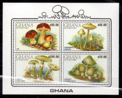 Ghana Hoja Bloque Nº Yvert 163 ** SETAS (MUSHROOMS) - Ghana (1957-...)