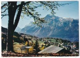 Les Carroz - La Station Et La Pointe D'Areu (2468 M.) - (Haute-Savoie - 1140 M) - Bonneville