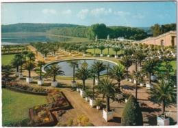 Chateau De Versailles - Le Jardin De L'Orangerie Et La Pièce D'eau Des Suisses - (Yvelines) - Versailles (Kasteel)