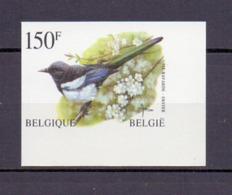 2697 EKSTER BUZIN ONGETAND  POSTFRIS** 1997 - België
