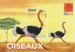 MDB-BK2-345 MINT ¤ GUINEE 2001 BLOCK ¤ BIRDS OF THE WORLD - OISEAUX - BIRDS - PAJAROS - VOGELS - VÖGEL - - Struisvogels