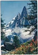 Chamonix - Mont Blanc -Les Drus Et L'Aiguille Verte Depuis Le Montenvers -  (Haute-Savoie) - Chamonix-Mont-Blanc