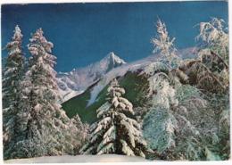 Symphonie En Blanc Au Pays Du Mont Blanc -(Au Loin,  L'Aiguille Du Dru) -  (Haute-Savoie) - Chamonix-Mont-Blanc