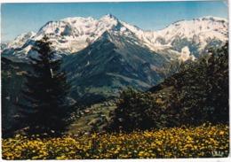 Panorama Sur Le Massif Du Mont-Blanc  - (Haute-Savoie) - Chamonix-Mont-Blanc