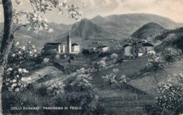CT-02954- COLLI EUGANEI - PANORAMA DI TEOLO - VIAGGIATA 1944 FRANCOBOLLO ASPORTATO-DA TEOLO A MONZA - Italia