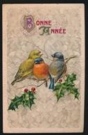 BONNE ANNEE    MET VOGELS IN RELIEF  GAUFRE - Neujahr