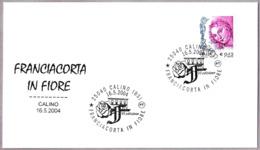La Comarca De FRANCIACORTA En Flor. ROSA - ROSE. Calino, Brescia, 2004 - Rosas
