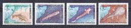 Somalia - 1979 - ( Freshwater Fish ) - Complete Set - MNH (**) - Somalie (1960-...)