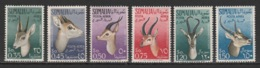 Somalia - 1955 - ( Haggard's Oribi ) - Complete Set - MNH (**) - Somalie (1960-...)