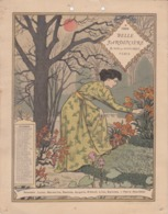 CALENDRIER BELLE JARDINIERE 1896 / NOVEMBRE - FORMAT 18X24 / EUGENE GRASSET - Calendari