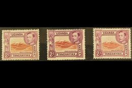 1938-54 MINT TWO SHILLING DEFINITIVE SET. An All Different Fine Mint Group Presented On A Stock Card, Inc Lake Brown & B - Publishers