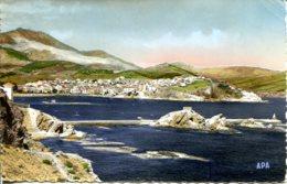 CPSM - BANYULS-SUR-MER- VUE GENERALE SUR LA VILLE ET LA RADE - Banyuls Sur Mer