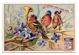 Chromo Liebig S 446 La Gent Ailée Concerto Violette Perchoir Oiseau Musicien Instrument Musique Triangle Violoncelle - Liebig