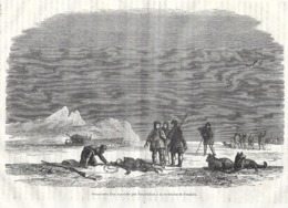 GRAVURE 1876...Découverte D'un Squelette Par L'Expédition à La Recherche De FRANKLIN - Estampes & Gravures