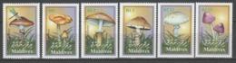 Maldive 2001 - Funghi           (g5785) - Funghi