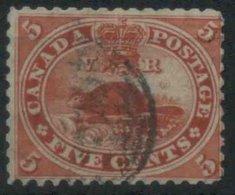 1859 Canada, 5 Cent. Castoro Usato - 1851-1902 Regno Di Victoria