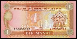 TURKMENISTAN - 1 Manat Nd.(1993) {Türkmenistanyň Merkezi Döwlet Banky} UNC P.1 - Turkménistan
