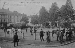 LILLE -  Le Marché Aux Chevaux - Lille