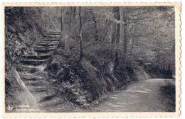 Linkebeek - Escaller Rustique /P01/ - Linkebeek