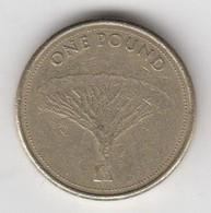 Gibraltar £1 Coin Siege Of Gibraltar 2004 Circulated - Gibraltar