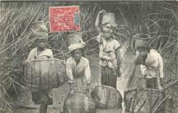 MADAGASCAR TANANARIVE PECHEUSES DANS LES JONCS - Madagaskar