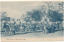 HAUTE VOLTA - Convoi D'Anes Au Mossi - Burkina Faso