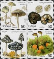 Serbia - 2019 - Flora - Mushrooms - Mint Stamp Set (se-tenant Block) - Servië