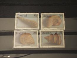TRANSKEI - 1992 CONCHIGLIE 4 VALORI -  NUOVI(++) - Transkei